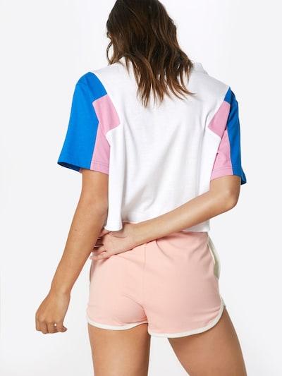 Urban Classics Shirt in blau / rosa / weiß: Rückansicht