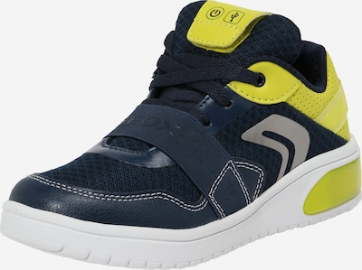 GEOX Sneaker in navy / neongrün: Frontalansicht