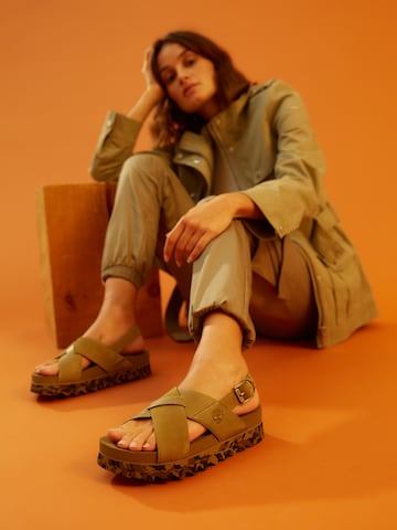 Inspired by Nature Look by Timberland