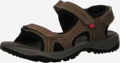 SALAMANDER Sandalen in braun / schwarz, Produktansicht