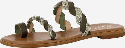 EVITA Sandale 'OLIMPIA' in mischfarben, Produktansicht