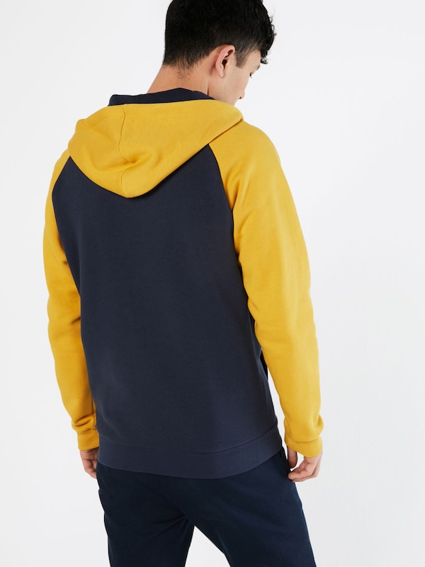 Iriedaily Sweatshirt 'De College'