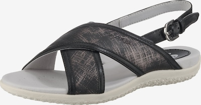 GEOX Komfort-Sandalen in silbergrau / schwarz, Produktansicht