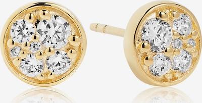 Sif Jakobs Ohrhänger 'Novara Piccolo' in gold, Produktansicht