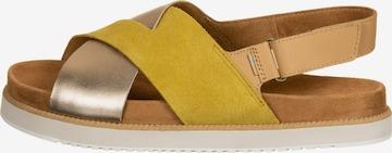 TOMS Sandalen in Mischfarben
