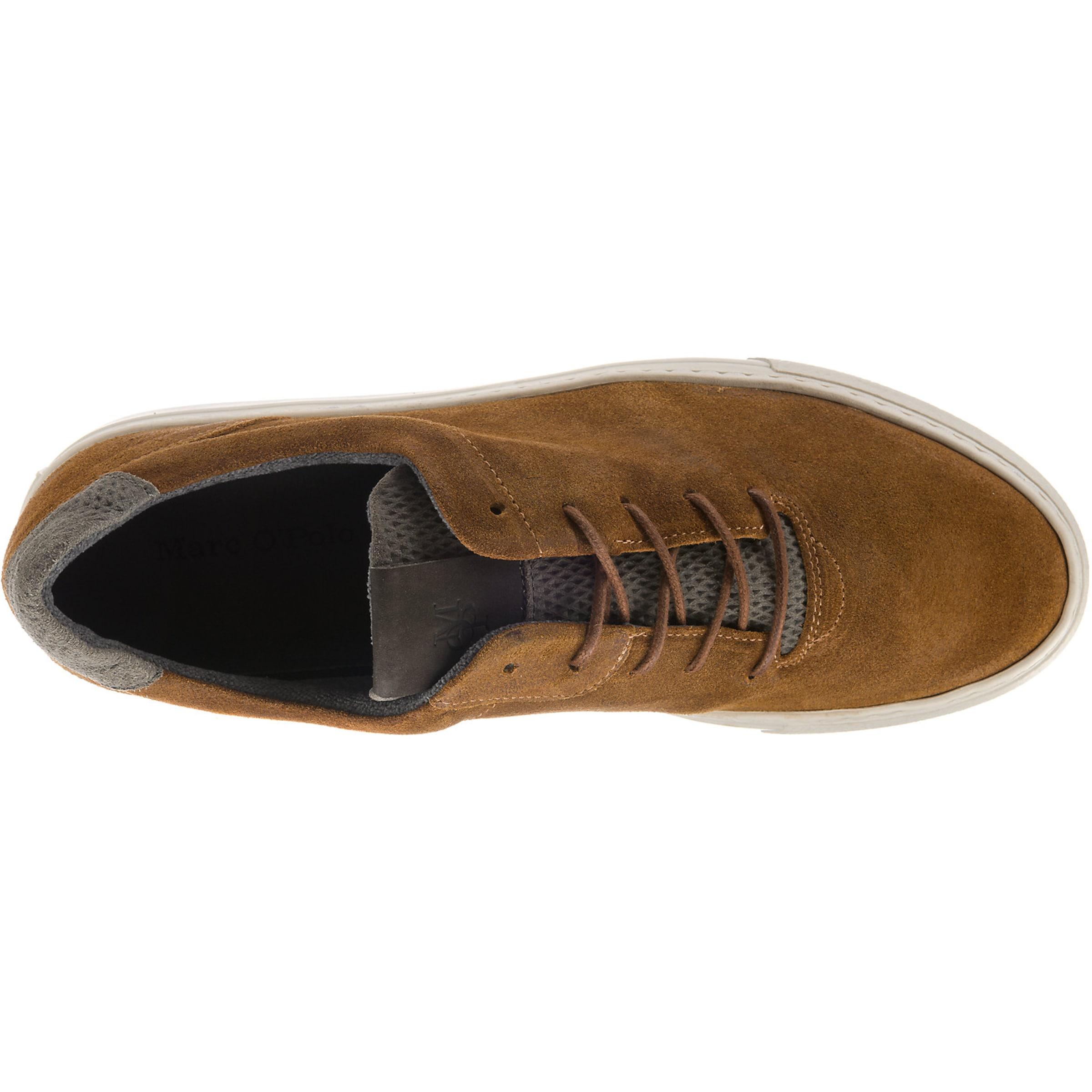 Braun O'polo Low In Sneakers Marc cKJT1lF