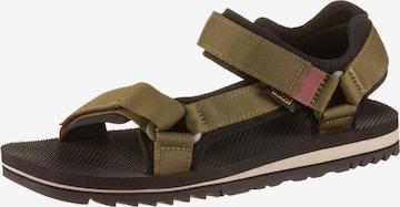 TEVA Sandals in Green