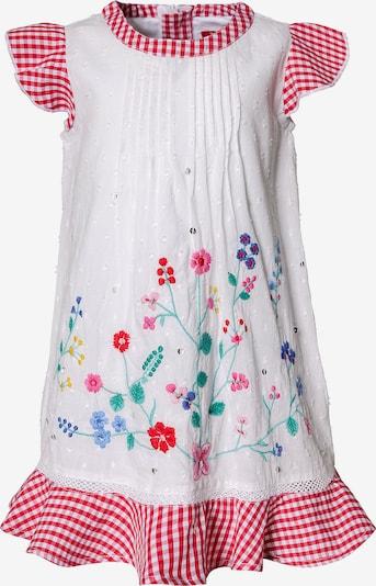 BONDI Kleid in mischfarben / weiß, Produktansicht