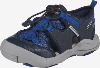 GEOX Sandale 'Kyle' in blau / kobaltblau, Produktansicht