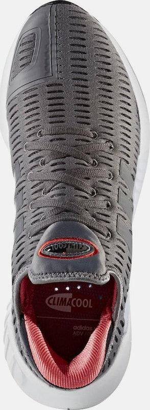 ADIDAS ORIGINALS Originals Sneaker  Climacool 02/17
