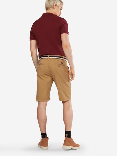 INDICODE JEANS Chino-Shorts 'Royce' in cognac: Rückansicht