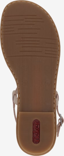 RIEKER Sandalen '64211-31' in mischfarben / rosé: Ansicht von unten