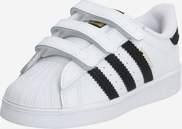 ADIDAS ORIGINALS Sneaker 'SUPERSTAR CF I' in Weiß