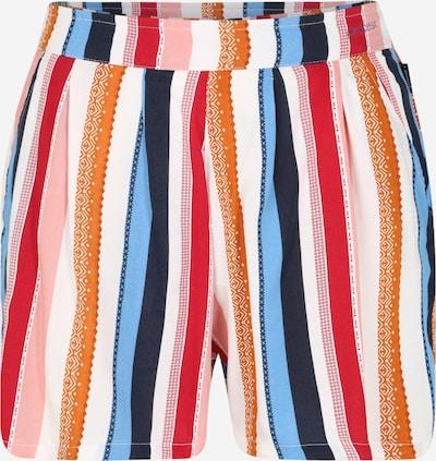 PROTEST Surfaripüksid 'KIWI' segavärvid, Tootevaade