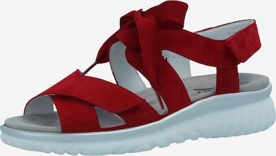 SEMLER Sandalen in dunkelrot, Produktansicht
