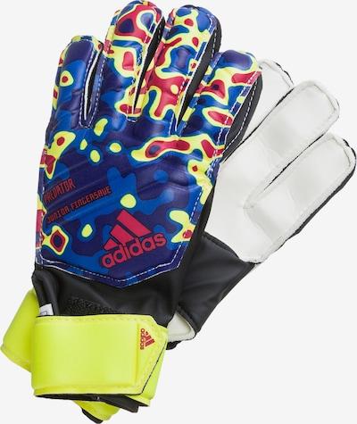 ADIDAS PERFORMANCE Torwarthandschuhe 'Predator Manuel Neuer' in blau / gelb / mischfarben, Produktansicht