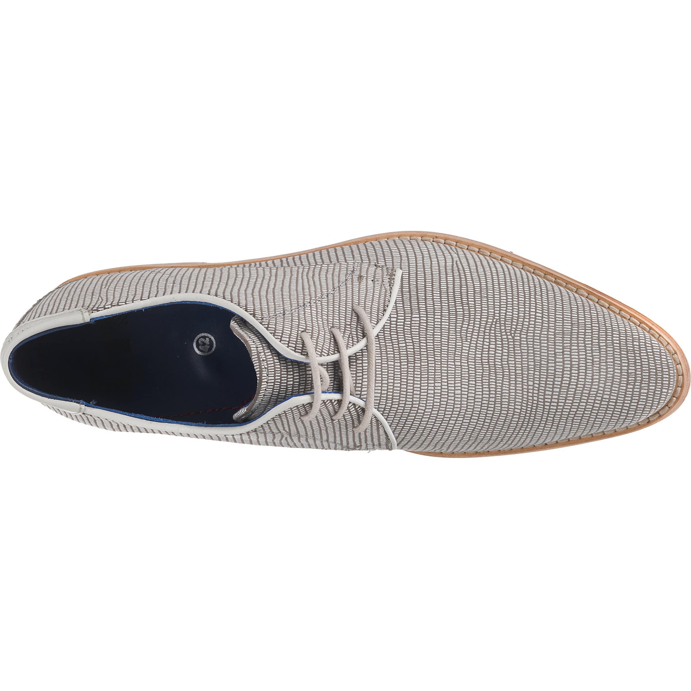 Hechter En À Lacets GreigeBlanc Chaussure Daniel 6Ygvfyb7