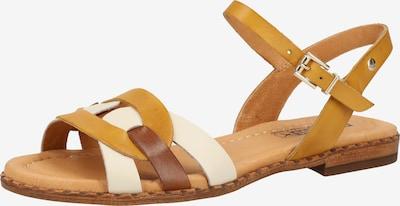 PIKOLINOS Sandale in kastanienbraun / gelb / weiß, Produktansicht
