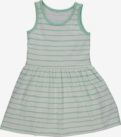 lamino Kleid in hellgrau / hellgrün, Produktansicht