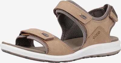 ECCO Sandale in hellbraun, Produktansicht