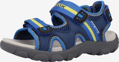 GEOX Open schoenen in de kleur Navy / Hemelsblauw / Geel: Vooraanzicht