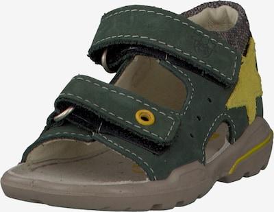 Pepino Schuhe 'JOEY' in gelb / oliv, Produktansicht