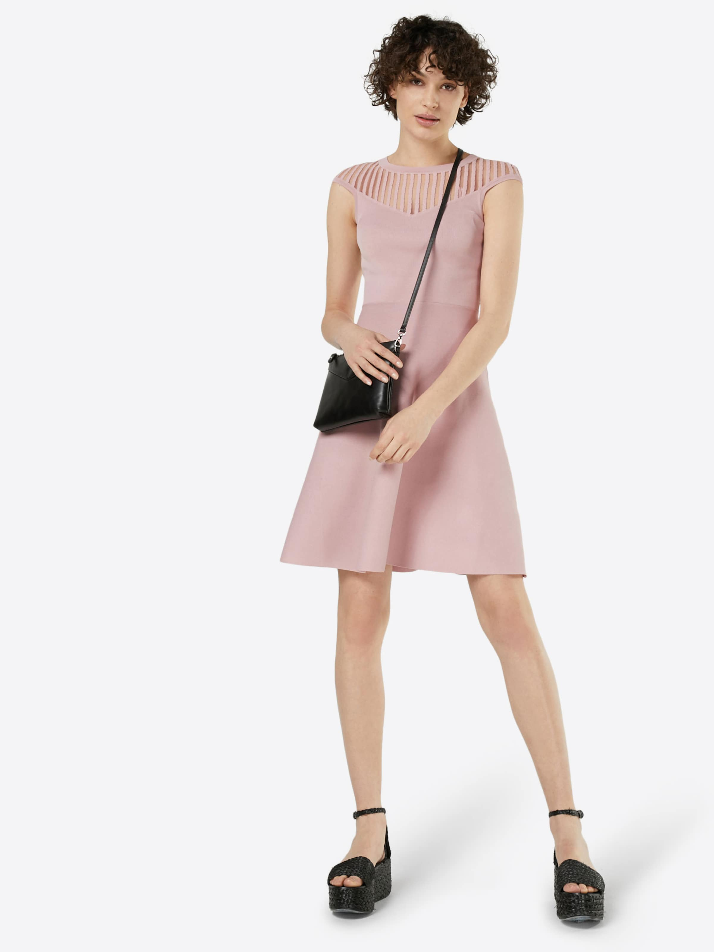 Günstig Kaufen Verkauf FRENCH CONNECTION Kleid 'Rose Crepe Knit' Rabatt Finish Y6EDl7