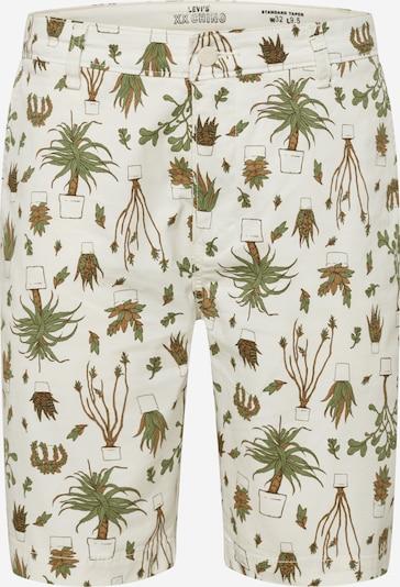 LEVI'S Shorts 'STD TPR CHINO SHORT II' in braun / oliv / offwhite, Produktansicht