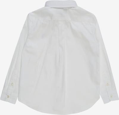 POLO RALPH LAUREN Koszula w kolorze białym: Widok od tyłu