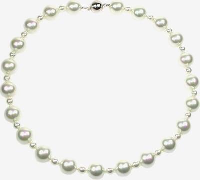 Orquidea Perlenkette 'Charissa' in weiß, Produktansicht