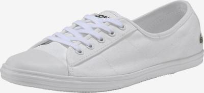 LACOSTE Sneaker 'Ziane' in grün / rot / weiß, Produktansicht