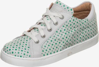 ADIDAS ORIGINALS Sneaker in grün / weiß: Frontalansicht