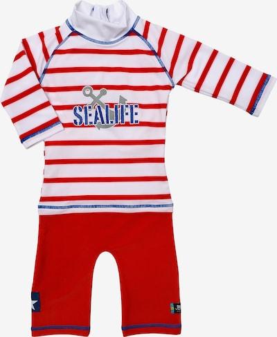 SWIMPY Schwimmanzug in royalblau / silbergrau / feuerrot / weiß, Produktansicht