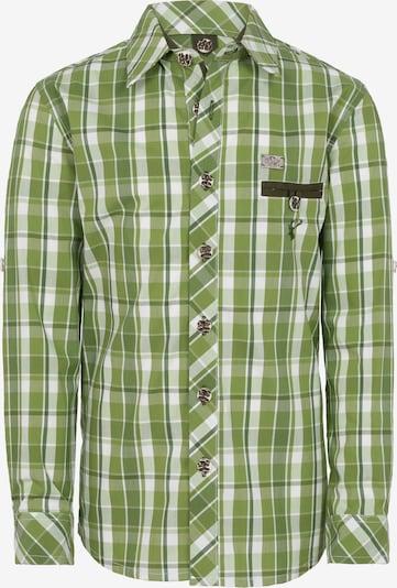 SPIETH & WENSKY Hemd in oliv / weiß, Produktansicht