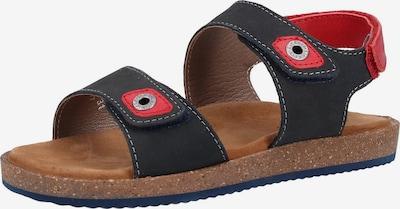 KICKERS Sandalen in dunkelblau / hellrot, Produktansicht