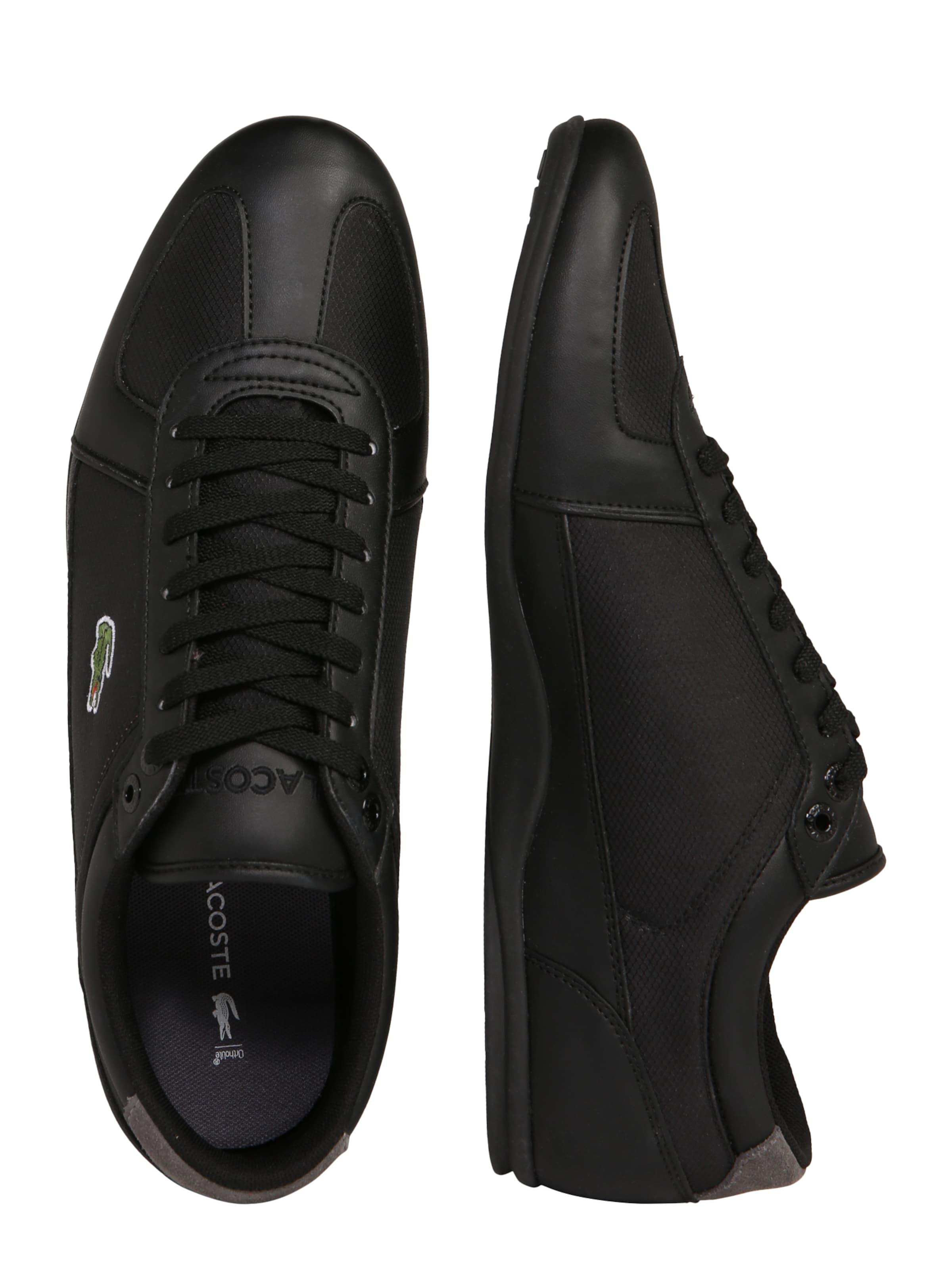 Cma' 'evara Sport 1 In DunkelgrauSchwarz 119 Sneaker Lacoste 3FcTlKJ1