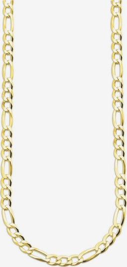 BRUNO BANANI Bruno Banani Gliederkette 'B0037N/S0/00/1/55' in gold, Produktansicht