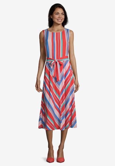 Betty Barclay Streifenkleid mit Bindegürtel in blau / rosa / rot, Modelansicht