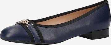 GEOX Ballet Flats in Blue