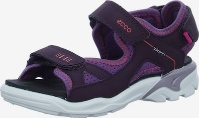 ECCO Sandalen in aubergine / dunkellila, Produktansicht