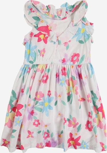 Carter's Kleit segavärvid, Tootevaade