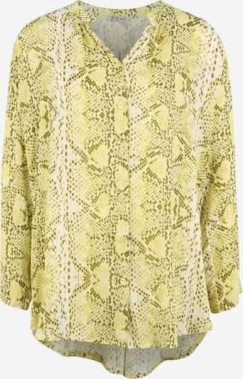 Z-One Bluse 'Philippa' in grün, Produktansicht