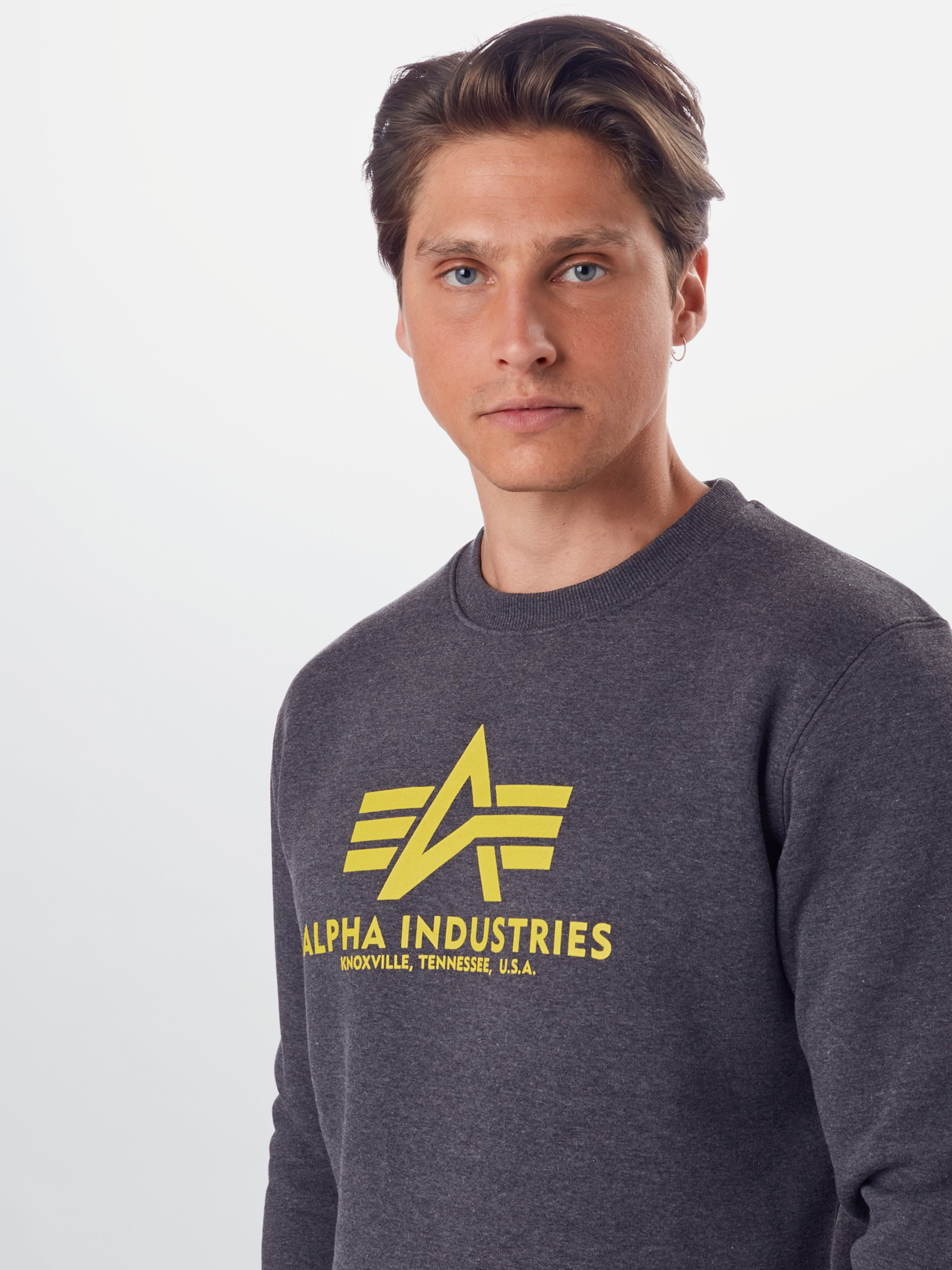 ALPHA INDUSTRIES Sweatshirt 'Basic' i gul / grå