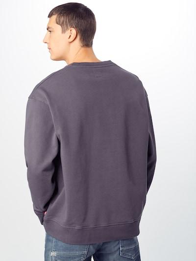 LEVI'S Bluzka sportowa 'RELAXED GRAPHIC CREWNECK' w kolorze ciemnoszarym: Widok od tyłu
