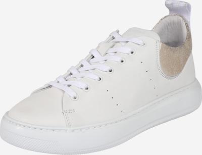 fehér PAVEMENT Rövid szárú edzőcipők 'Elvi', Termék nézet