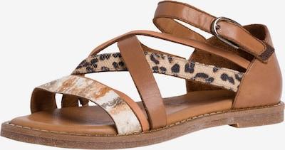 TAMARIS Sandale in beige / braun / schwarz, Produktansicht