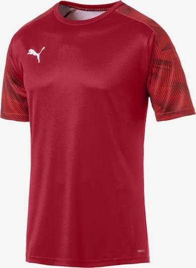 PUMA T-Shirt fonctionnel 'Cup' en rouge, Vue avec produit