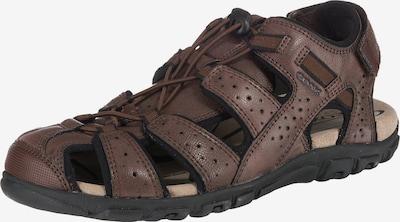 GEOX Sandale 'S. Strada' in braun, Produktansicht