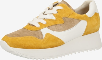 Paul Green Sneakers laag in de kleur Lichtbruin / Geel, Productweergave