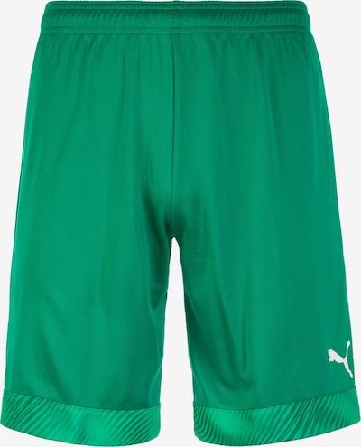 PUMA Shorts 'Cup' in dunkelgrün, Produktansicht